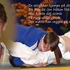 Jon Håkon Bergan Himle (16) slår  en attenåring med brunt belte i bakkekamp