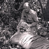 Lee Sproul who accompanied my Dad on an Indian hunt took this fine tiger.