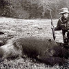 Dad killed this brown bear in Alaska with a .375 H&H. He removed the scope for better visibility in the heavy rain.