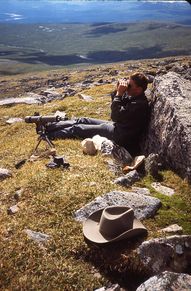 Good optics are essential for sheep hunting. Here, we are using binoculars to spot distant sheep. Sifton Range, Yukon.