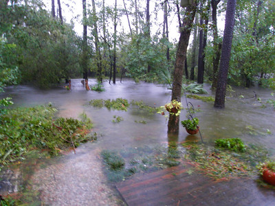 Our back yard sunday night during the flooding...  Note the bridge is floating in place...
