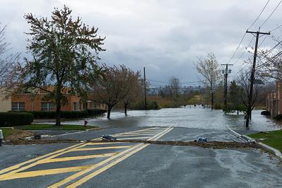 Hurricane Sandy Debris line of high water mark