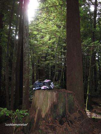 I-BMW Flash Gallery 9 SGR '09