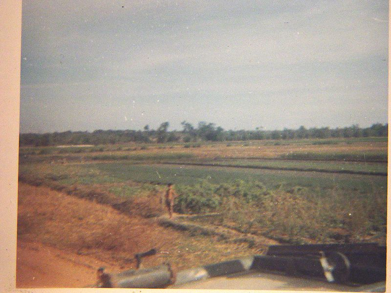 A little boy standing on a rice paddy dike.