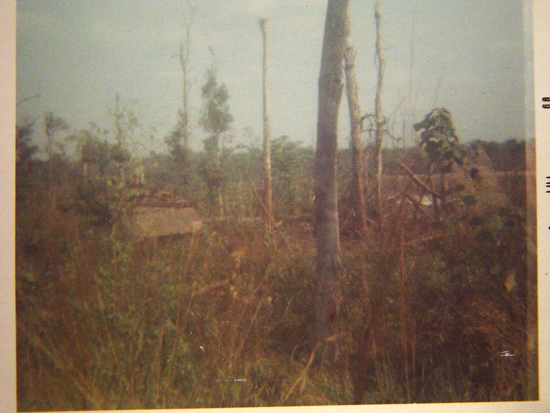 Here we are moving out of an area that we were fighting in, notice how shot up all of the trees are.