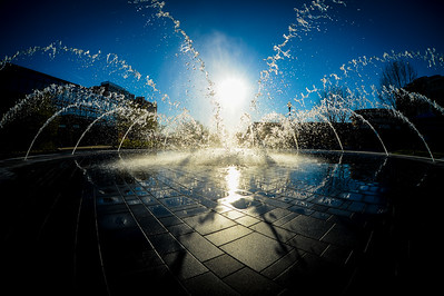 Fountain Silhouette