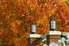 2007_fall_campus_scenes0532