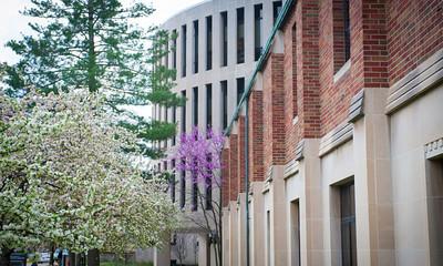 Spring campus scenes from around campus
