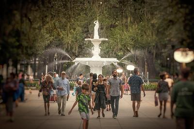 Evenings In Savannah