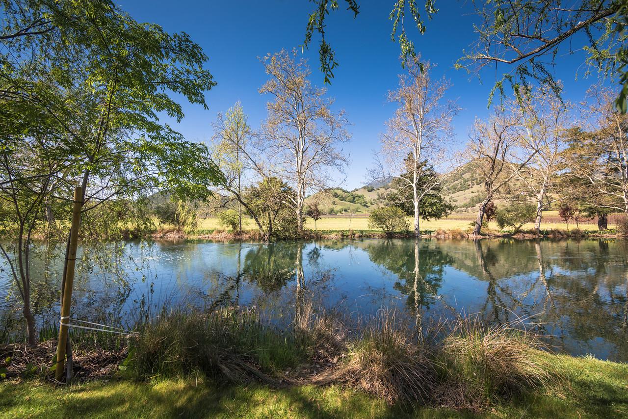 Lake Jade