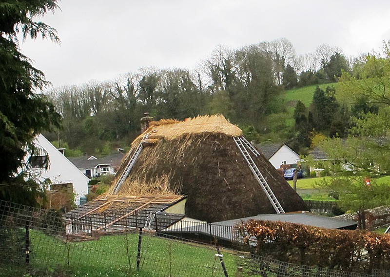A Winterborne Houghton cottage gets a new hat.