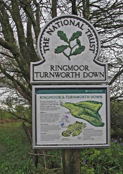 """Ringmoor, a Pre-Roman settlement adjacent to Wessex Ridgeway, an ancient trackway.<br /> To read more see this website :-  <a href=""""http://www.turnworthdown.info/"""">http://www.turnworthdown.info/</a>"""