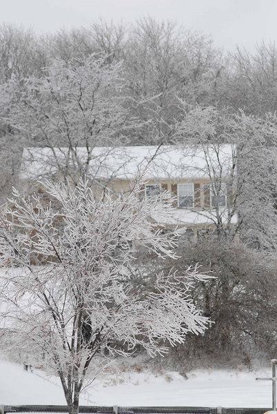 IceStormFeb2007037