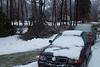 Some tree damage
