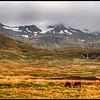 View of Snæfellsjökull mountain and glacier from Grundarfjörður