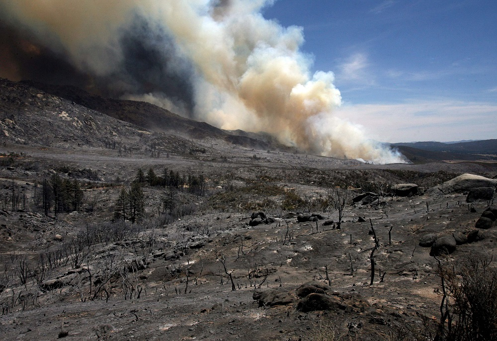 . Looking at the blackened landscape from the Mountain Fire near Lake Hemet on Tuesday July 16, 2013.  The 14,200 acre forest fire near Idyllwild Calif., has caused Idyllwild and adjacent communities east of Highway 243 to issued mandatory evacuations for hundreds of homes Wednesday. (AP Photo/The Press-Enterprise, Frank Bellino)