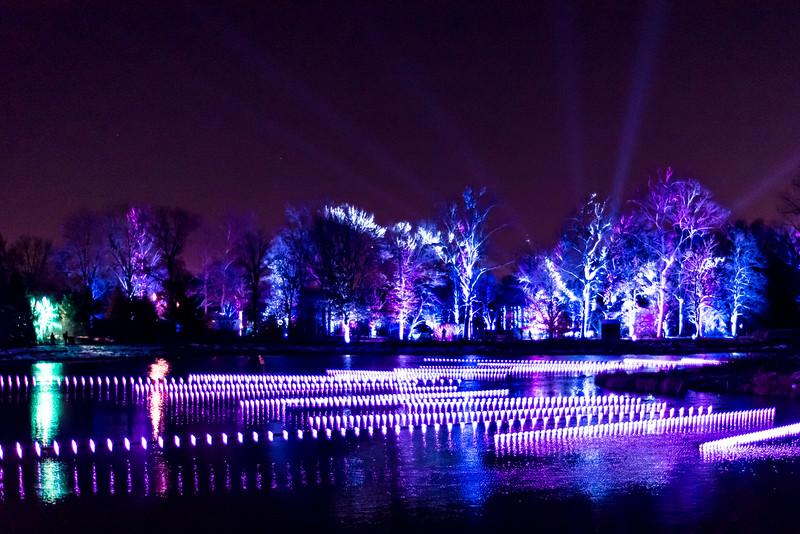 Illumination - Morton Arboretum 2016