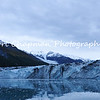 "This image is of the Glaciers of College Fjord. College Fjord is a fjord located in the northern sector of Prince William Sound in Alaska. The fjord contains five tidewater glaciers (glaciers that terminate in water), five large valley glaciers, and dozens of smaller glaciers, most named after renowned East Coast colleges. On the northwest side of the fjord, the glaciers were named after the women's colleges, such as Smith, Bryn Mawr, Vassar, Wellesley, Barnard, and Holyoke. On the southeast side, the glaciers are named after men's colleges Harvard, Yale, Amherst, and Dartmouth. College Fjord was discovered in 1899 during the Harriman Expedition, at which time the glaciers were named. The expedition included a Harvard and an Amherst professor, and they named many of the glaciers after elite colleges. According to Bruce Molina, author of Alaska's Glaciers, ""They took great delight in ignoring Princeton.""<br /> <br /> Some of these glaciers have retreated since the original Harriman Expedition, but not the largest of them: Harvard. Harvard is 1 1/2 miles wide, approximately 225 feet high at its terminal face, stretches below the waterline up to about 120 feet, and reaches back to the Chugach Icefield nearly 24 miles away. This giant of College fjord is slowly advancing, calving literally tons of ice into the fjord each day. These glaciers parade down, some of them 3,700 feet to the mile, from the steep mountains. No place else is there such a density of tidal glaciers. <br /> <br /> In 1964 College Fjord was the epicenter of the Good Friday Earthquake, the most powerful earthquake in U.S. history."