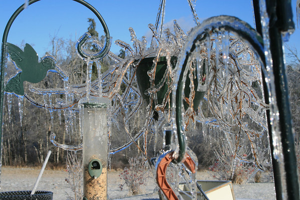 Images from an Ice Storm