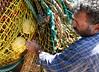 Guiseppe Pennisi fishing net system