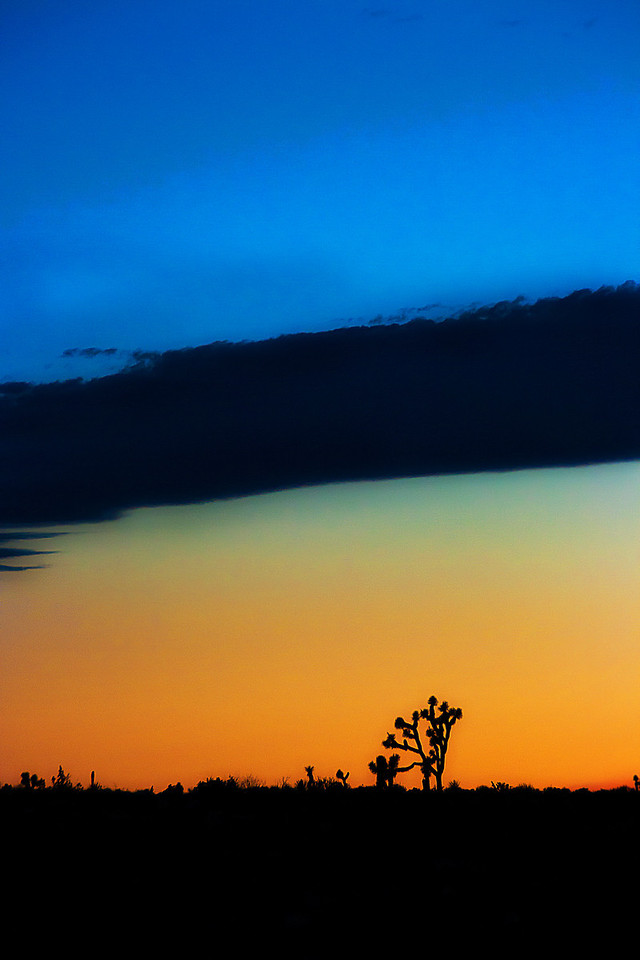 Three Layer Sunset~<br /> <br /> Joshua Tree National Park