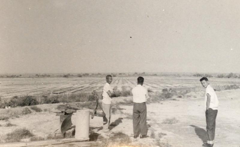 Niland 1953 -  Chomatsu Tamura, Namiki Yamasaki & Toshiharu Yamasaki