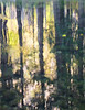 Merced Reflections<br /> by Brent Gilstrap<br /> <br /> October 2011<br /> Yosemite Valley