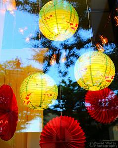 Store Window - Glen Ellyn