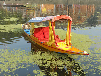 One of the colourful shikaras (water taxis) on Dal Lake - a lovely way to get around.