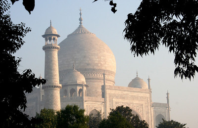 garden view of the taj mahal