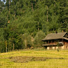 A cabin in the mountains of Kupwara, Kashmir