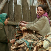 Kashmiri girls bundle firewood to take to the bazaar