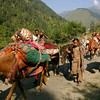 Many Bakarwal families travel hundreds of kilometers over difficult mountainous terrain on foot during their biannual migration