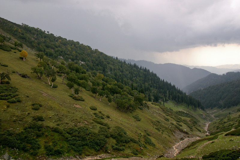 The serene slopes of South Kashmir