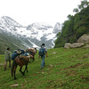 Martin and Marcus with our pack horses on a trek in Kolahoi, Kashmir