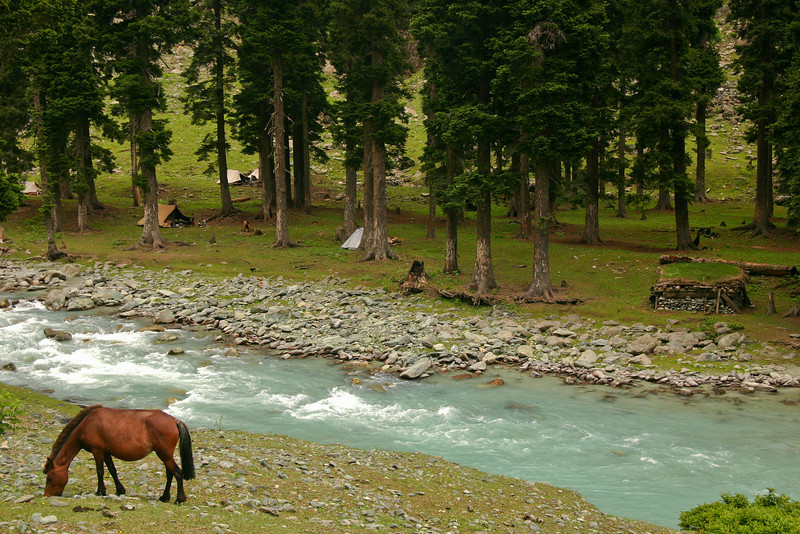 Lidder Valley, Kashmir: notice the cute grass-covered cabin on the right