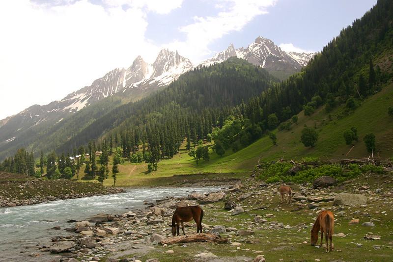Sonamarg, Kashmir