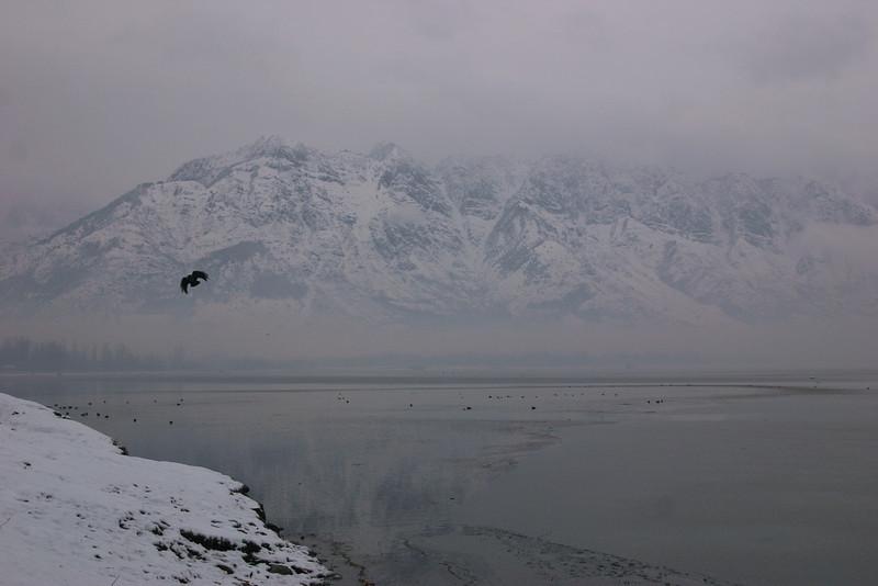 Dal Lake in winter