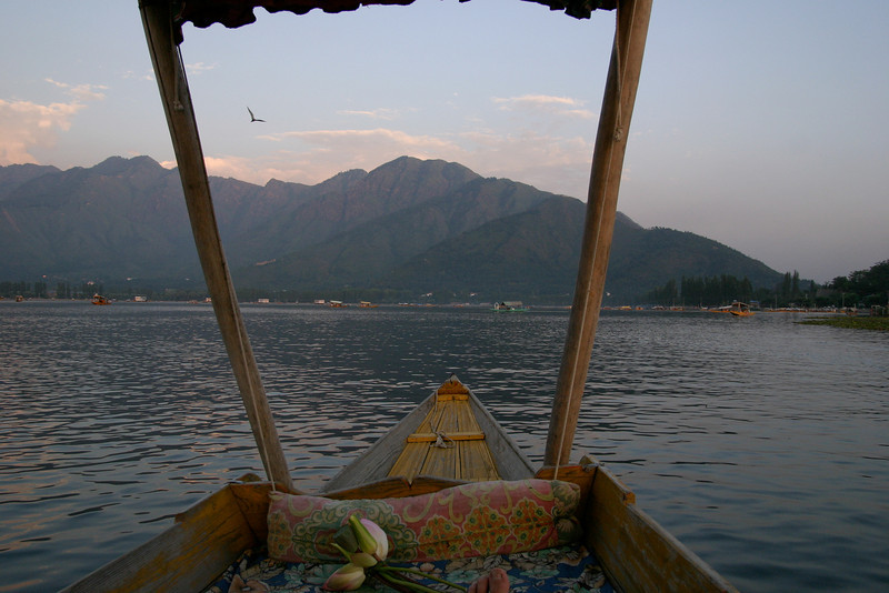 A relaxing shikara ride on Dal Lake, Srinagar