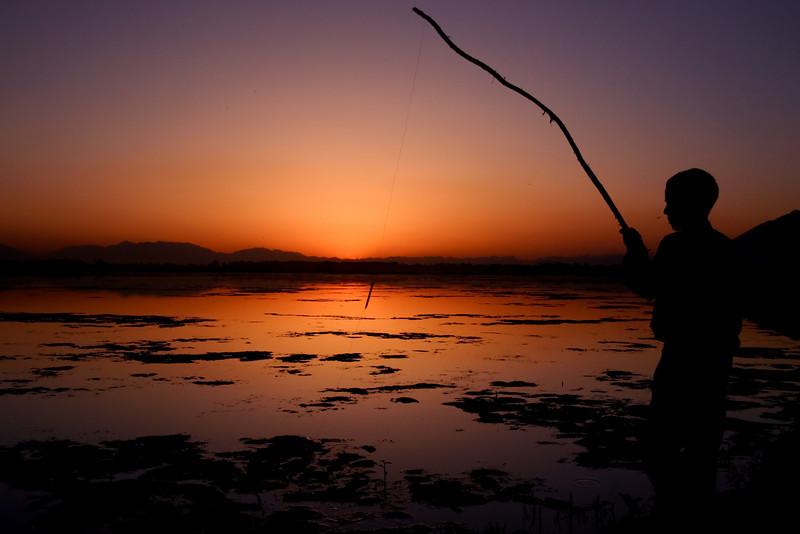 Fishing at Dal Lake, Kashmir
