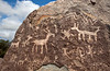 Petroglyph Point in Prescott Arizona