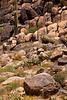 Lizard Rock near Stanton Arizona