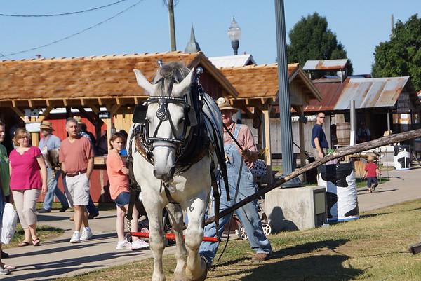 Indiana State Fair - 2012
