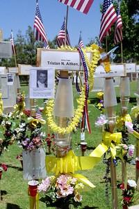 Tristan N  Aitken