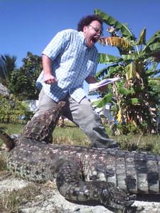 Alligator Problems