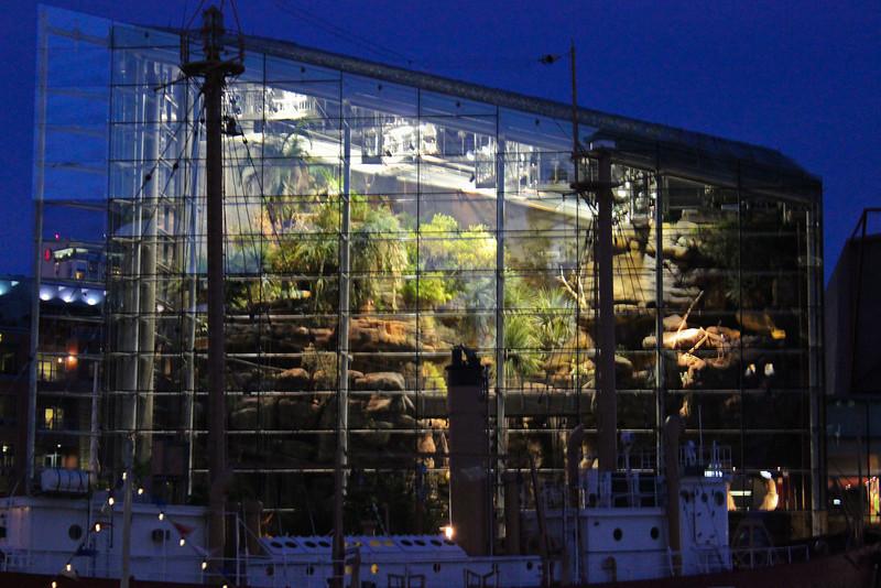 The National Aquarium's Rainforest as seen through the glass at night.