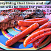 "Everything that lives and moves about will be food for you. Just as I gave you the green plants, I now give you everything.-Genesis 9<br /> <br /> <a href=""http://www.biblegateway.com/passage/?search=Genesis"">http://www.biblegateway.com/passage/?search=Genesis</a>+9&version=NIV<br /> <br /> *from Men's Softball Team BBQ <br /> <br /> <a href=""http://salphotobiz.smugmug.com/Food/American-Food/27521805_ZN9Gkj#!i=2718578793&k=nGn6z7n"">http://salphotobiz.smugmug.com/Food/American-Food/27521805_ZN9Gkj#!i=2718578793&k=nGn6z7n</a><br /> <br /> original pic..<br /> <a href=""http://salphotobiz.smugmug.com/Food/American-Food/27521805_ZN9Gkj#!i=2766691991&k=sDmkMTC"">http://salphotobiz.smugmug.com/Food/American-Food/27521805_ZN9Gkj#!i=2766691991&k=sDmkMTC</a>"