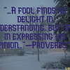 """2A fool finds no delight in understanding, but only in expressing his opinion. -Proverbs 18<br /> <br /> <br /> <a href=""""https://www.bible.com/bible/314/PRO.18.TLV"""">https://www.bible.com/bible/314/PRO.18.TLV</a><br /> <br /> <a href=""""https://salphotobiz.smugmug.com/Weather/Winter/Winter-Season-in-Morris/i-nrdqB68"""">https://salphotobiz.smugmug.com/Weather/Winter/Winter-Season-in-Morris/i-nrdqB68</a>"""