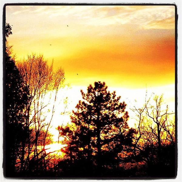 Cupid Sunset. #btv #vt