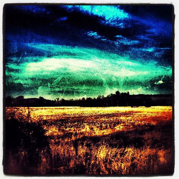 Open Field Abstract. #btv #miltonvt #vt